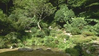 坪川氏庭園