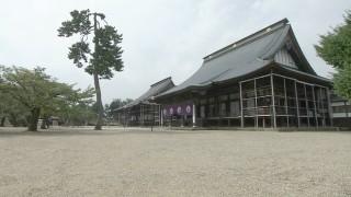 越前四本山のひとつ・誠照寺