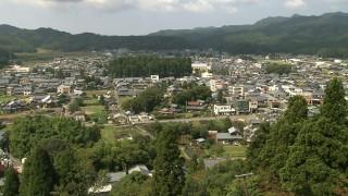 中央の森が劔神社の社叢林