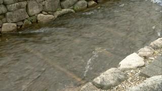 川底には舟を滑らせる枕木が残る