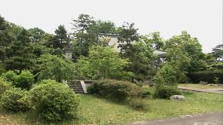 新田義貞が眠る称念寺