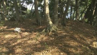 本丸跡には土塁や石垣などの遺構が見られる
