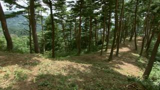 六呂瀬山1号墳