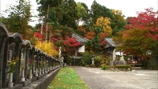 松尾芭蕉も訪れた天龍寺の境内
