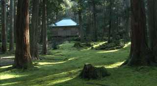 平泉寺白山神社(越前馬場)
